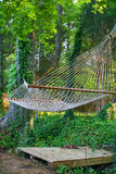 Tranquil hammock. A tranquil hammock under a green canopy Royalty Free Stock Image