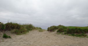 Tranquil isolated beach scene stock video footage