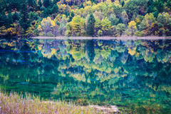 Tranquil lake in autumn Stock Images
