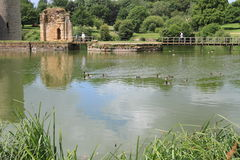 Tranquil lake and garden in East Sussex Stock Photo