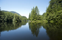 Tranquil lake with reflections Stock Image