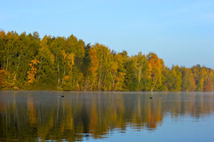 Tranquil lake with reflections of trees Royalty Free Stock Photography