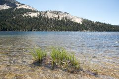 Tranquil lake in Yosemite royalty free stock images