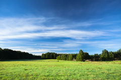 Tranquil landscape photo of meadow at sunrise Royalty Free Stock Photos