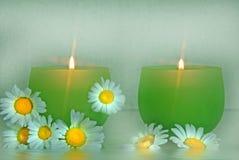 Tranquil Light Stock Image