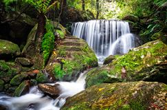 Tranquil lush waterfall in Leura. Tranquil waterfall cascades over a rock ledge and past  lush ferns and moss covered rocks royalty free stock photos