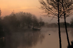 Tranquil misty lake at dawn. A calm, tranquil lake at dawn, with mist on the water and silhouettes of trees and foliage in the foreground royalty free stock image