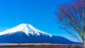 Tranquil Mount Fuji View Scenery stock image