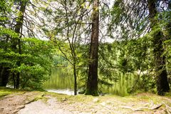 Tranquil mountain lake with reflections Stock Image
