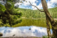 Tranquil mountain lake with reflections Royalty Free Stock Photos