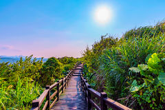 Tranquil mountain path with sunlight Stock Photo