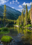 Tranquil Mountain Stream in Glacier National Park Royalty Free Stock Image