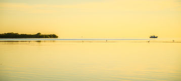 Tranquil nature in florida keys Stock Photography