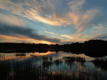 Tranquil New Hampshire pond. Eel Pond, Rye NH; Reflections; Clouds reflected over New Hampshire pond at Sunset; Reeds, marshes and rushes silhouetted against royalty free stock photo