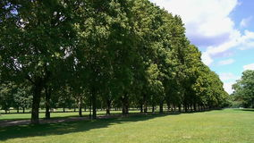 Tranquil park in oslo stock footage