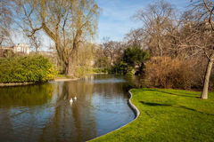 Tranquil park with a pond and wildflowers Royalty Free Stock Photography