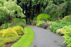 Tranquil Path Stock Images