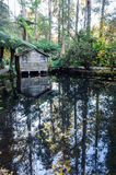 Tranquil pond in an autumn forest in the Dandenong Ranges, Australia Stock Photo