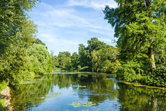 Tranquil Pond Framed by Lush Green Woodland Park Royalty Free Stock Image