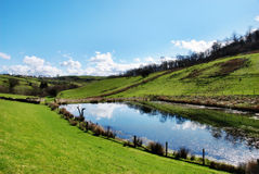 Tranquil pond in rolling English countryside Stock Images