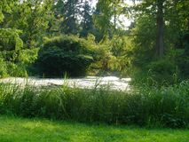 Tranquil pond stock image