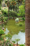 Tranquil pool in a landscaped garden Royalty Free Stock Image