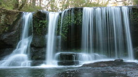 Tranquil Rainforest Waterfall - Slow Shutter. Temperate Rainforest Waterfall taken in NSW Australia. This is a good example of what a Rainforest would have stock video