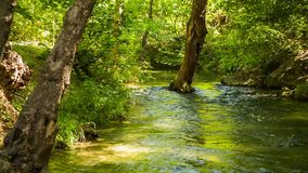 Tranquil River Flowing In Beautiful Picturesque stock video