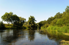 Tranquil river flowing through the forest Stock Photo