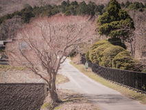Tranquil road of japan with a retro Royalty Free Stock Images