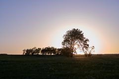 Tranquil rural scene at sunset in Flint Hills, USA. Tranquil rural scene with silhouettes of trees at the horizon on a hill against sky at sunset in Flint Hills Stock Image