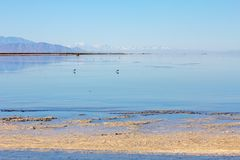 Tranquil Salton Sea landscape in pastel blues and pinks, CA royalty free stock photography