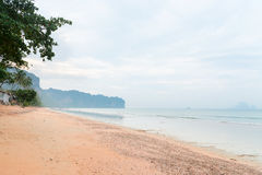 Tranquil and sandy tropical beach in Krabi Royalty Free Stock Image