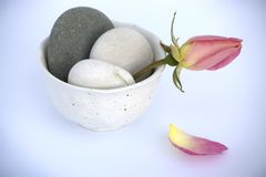 Tranquil scene. Rose and pebbles in a bowl on blue background Royalty Free Stock Image
