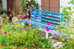 Tranquil scene of a blue bench. Between flowers Stock Photos