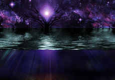 Tranquil Scene. Tranquil Night and Water Scene Royalty Free Stock Photography