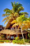 Tranquil scene of ocean coast hut and palm trees Royalty Free Stock Images