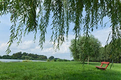 Tranquil scene in the park Royalty Free Stock Photos