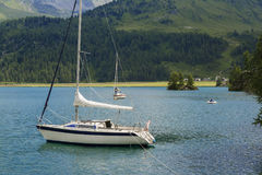 Tranquil scene on the shore of the Sils Lake Royalty Free Stock Image