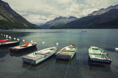 Tranquil scene on the shore of the Sils Lake Royalty Free Stock Photography