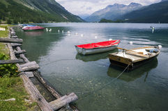 Tranquil scene on the shore of the Sils Lake Royalty Free Stock Photo