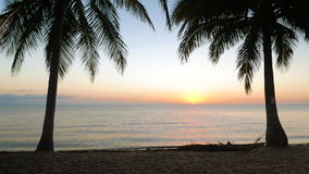 Tranquil Scene of Sun Rising Over the Sea. Sunrise in between of two palms at Hopkins, Belize stock video footage