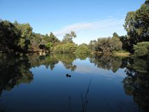 Tranquil Setting. A small dam situated at the Theravada Monks Monastery at Serpentine South of Perth, Western Australia Royalty Free Stock Photography