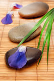 Tranquil spa. With massage stones, petals and green leaves royalty free stock photo