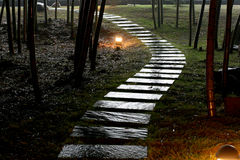 Tranquil Stone road in garden. The wet stone road in garden after rain in night Stock Images