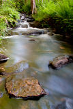 Tranquil stream. Background of tranquil stream and stones Stock Images
