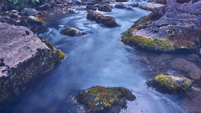 Tranquil Stream. A nice and soul-soothing stream right in the heart of the Swiss Alps stock image