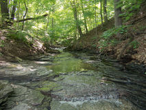 Tranquil Stream. Quiet, Peaceful and Tranquil Stream at a Delaware County Park in Ohio stock photos