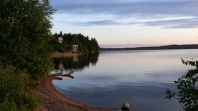 Tranquil summer riverside, evening woody coast stock video footage