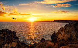 Tranquil sunset scene at the ocean Royalty Free Stock Photo